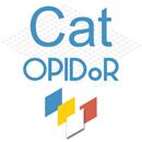 illustration Cat OPIDoR – Le catalogue des services dédiés aux données de recherche