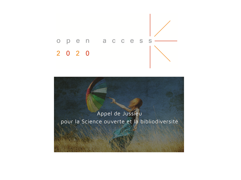 illustration Building Bibliodiversity with Multiple Approaches. Joint Statement of the French Open Science Committee, promotors of the Jussieu Call, and the Open Access 2020 Initiative